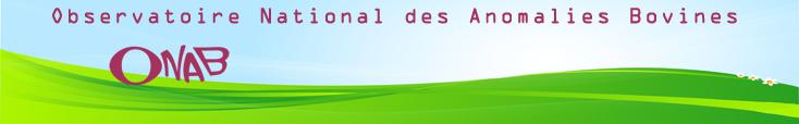 Bienvenue sur le site de l'ONAB