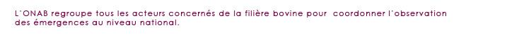 Titre_site3